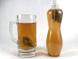 佳葉龍茶茶包,gaba茶茶包